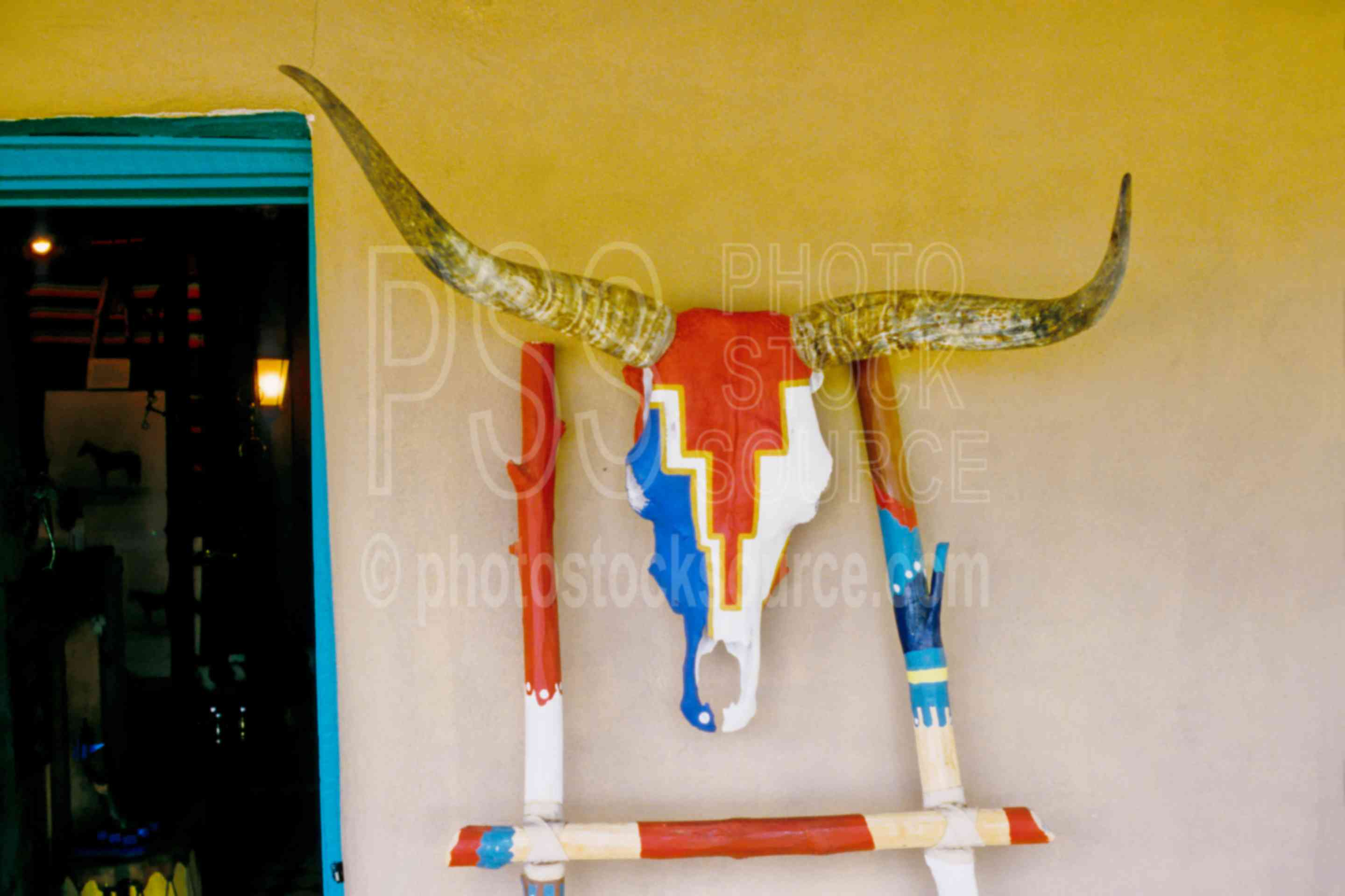 Painted Cow Skull,cow skull,arts,usas