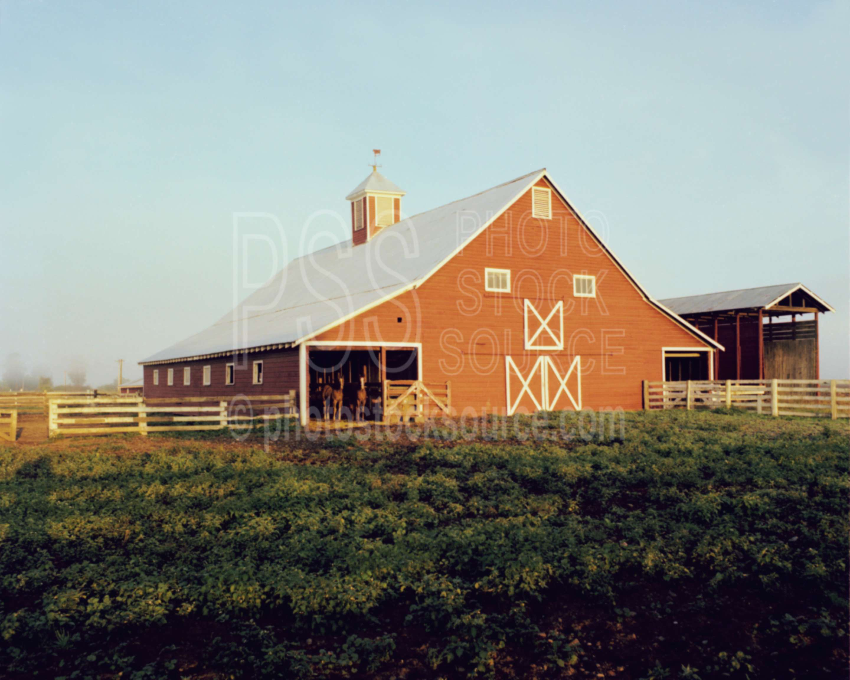 Photo of red barn by photo stock source building for Barn builders oregon