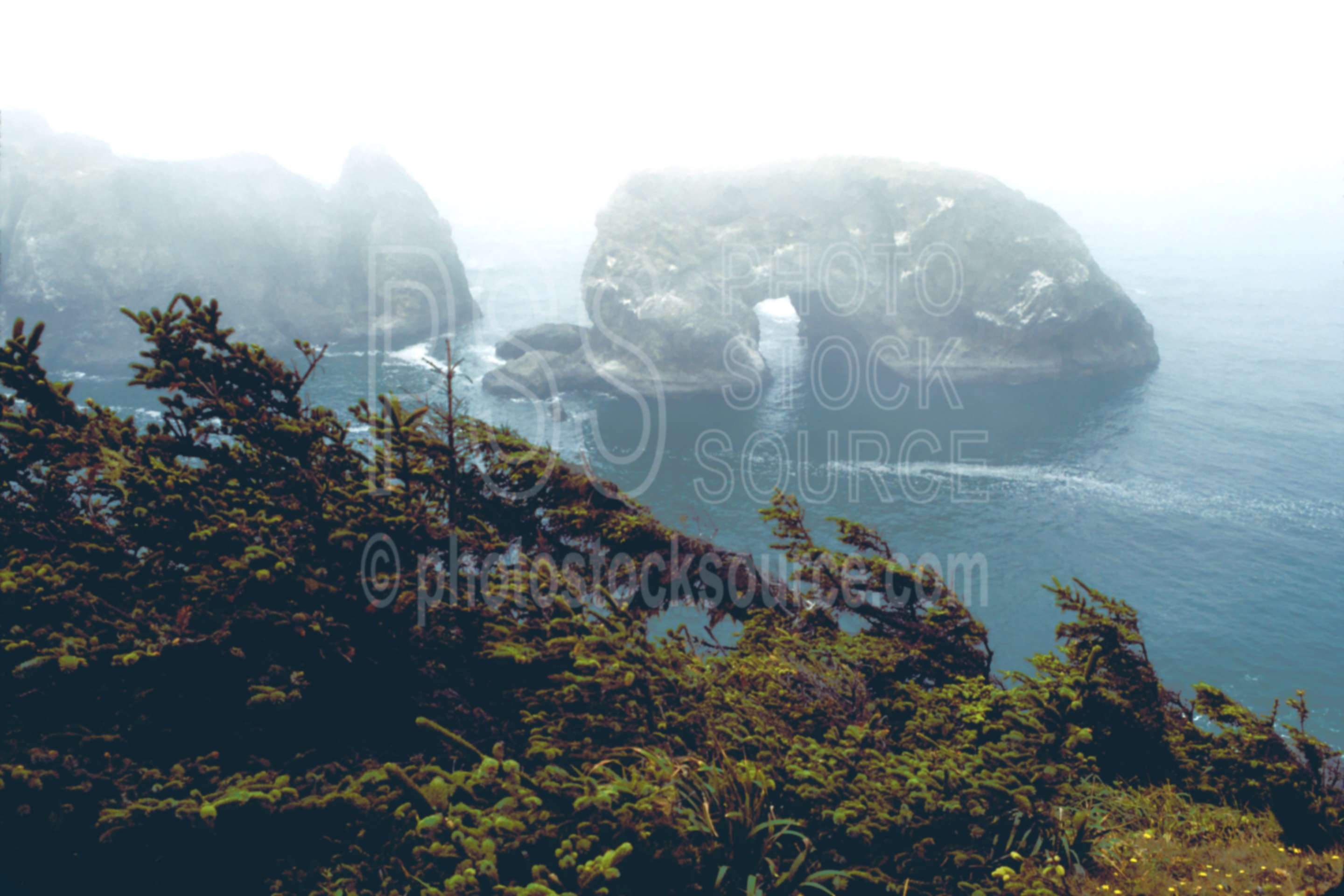 Arch Rock,fogs,mist,rock,arch,landform,usas,nature,seascapes,coast