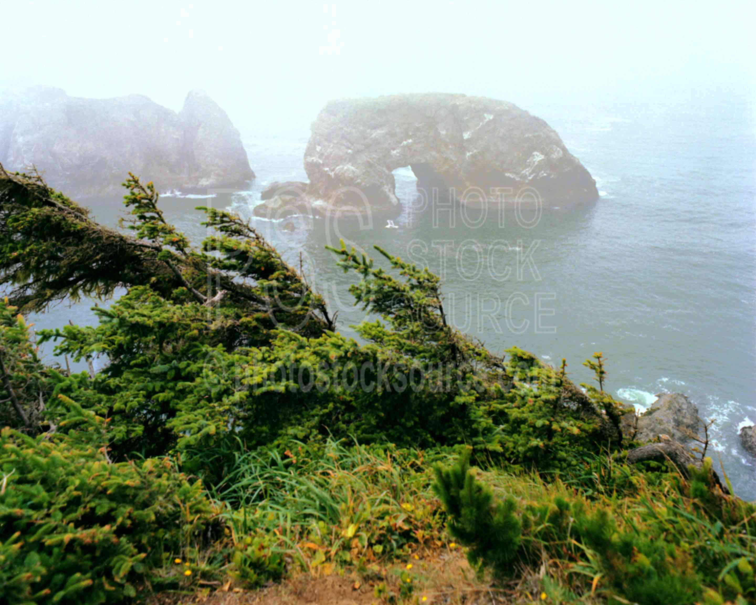 Arch Rock,boardman state park,sea stack,usas,nature,seascapes,coast