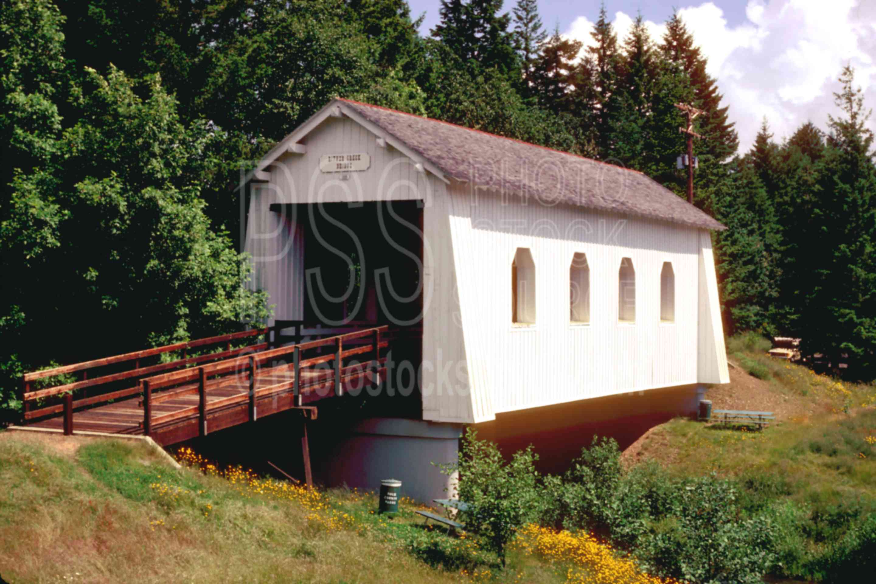 Kings Valley,covered bridge,usas,architecture,bridges