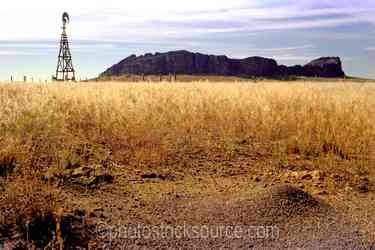 Photo of Windmill and Ant Hill