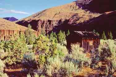 Photo of Sheepherder Cabin