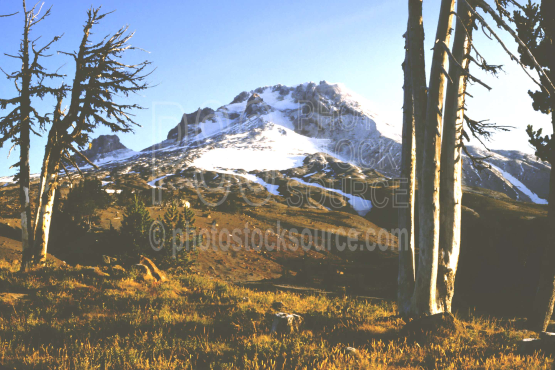 Mt. Hood,timberline lodge,mount,usas,mountains
