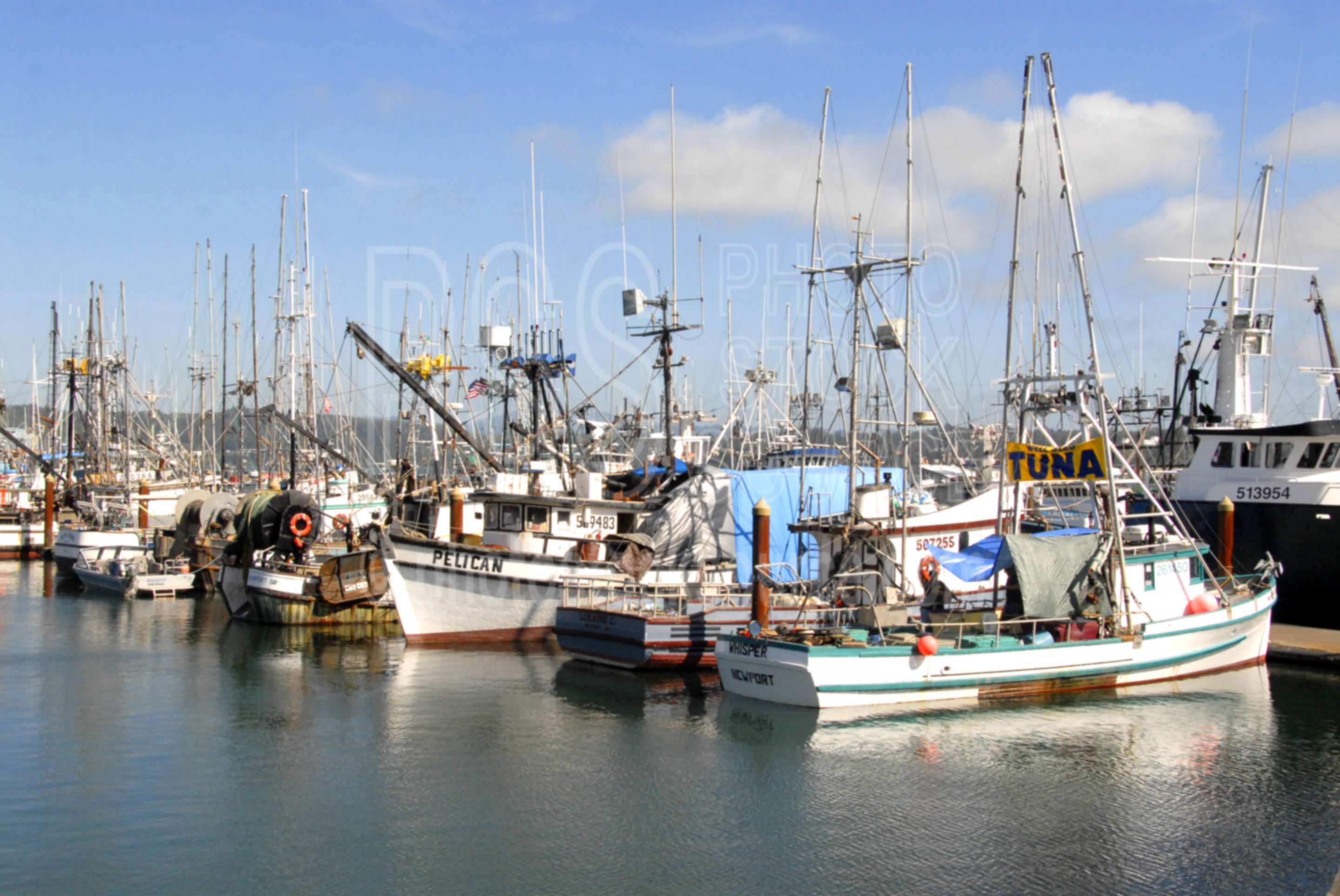 Photo of newport harbor by photo stock source harbor for Newport harbor fishing