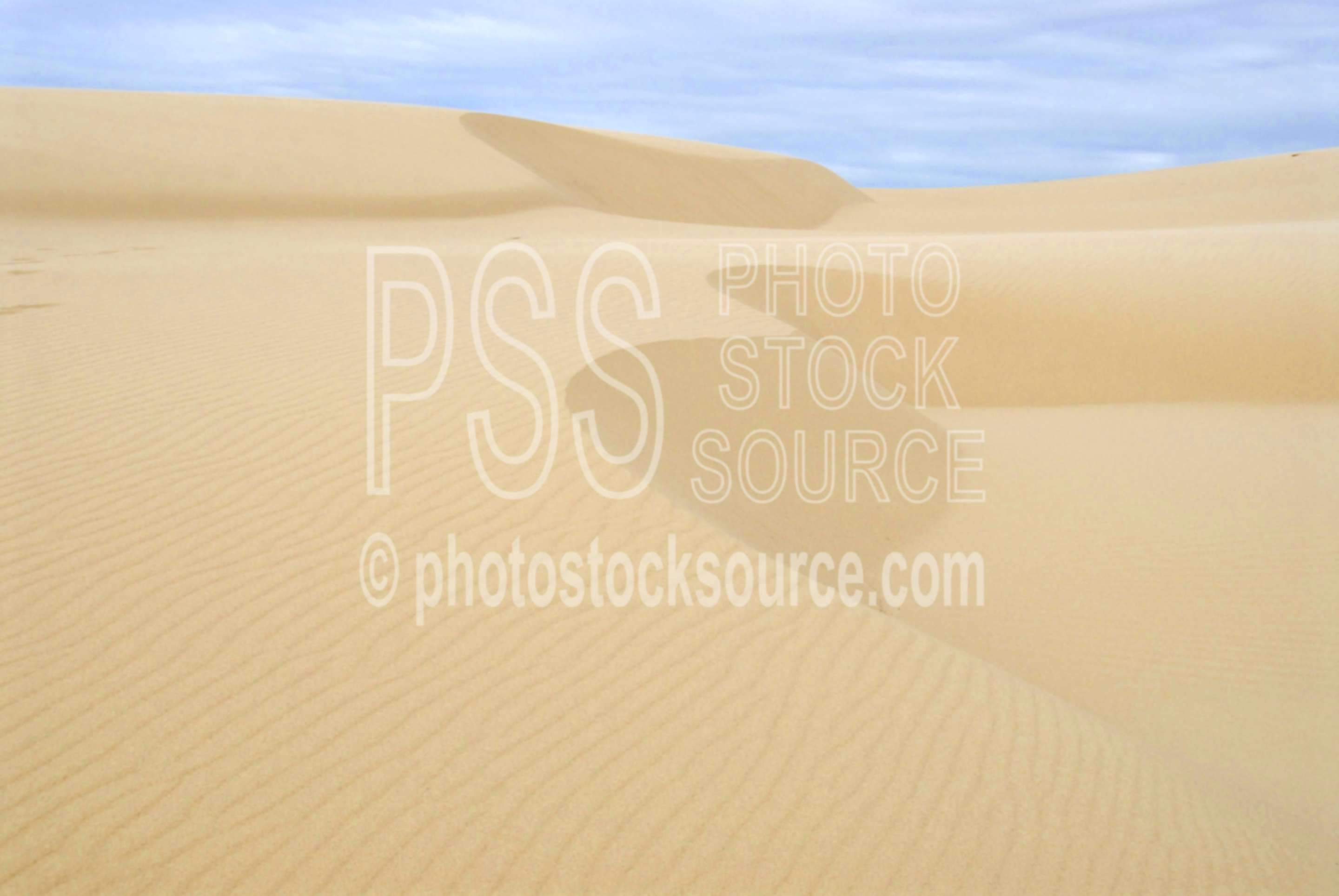 Wind Blown Dunes,sand,dune,dunes,wind,nature