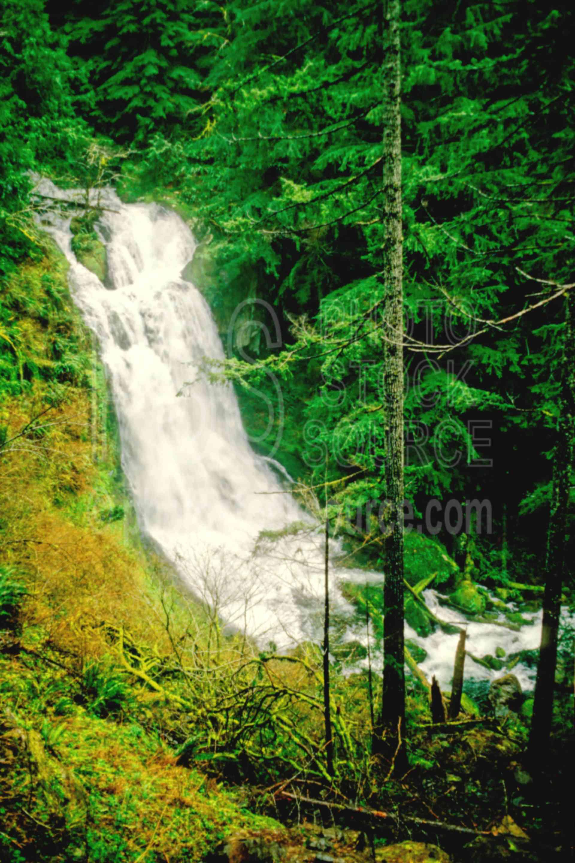 Upper Kentucky Falls,kentucky falls,water,usas,nature,waterfalls