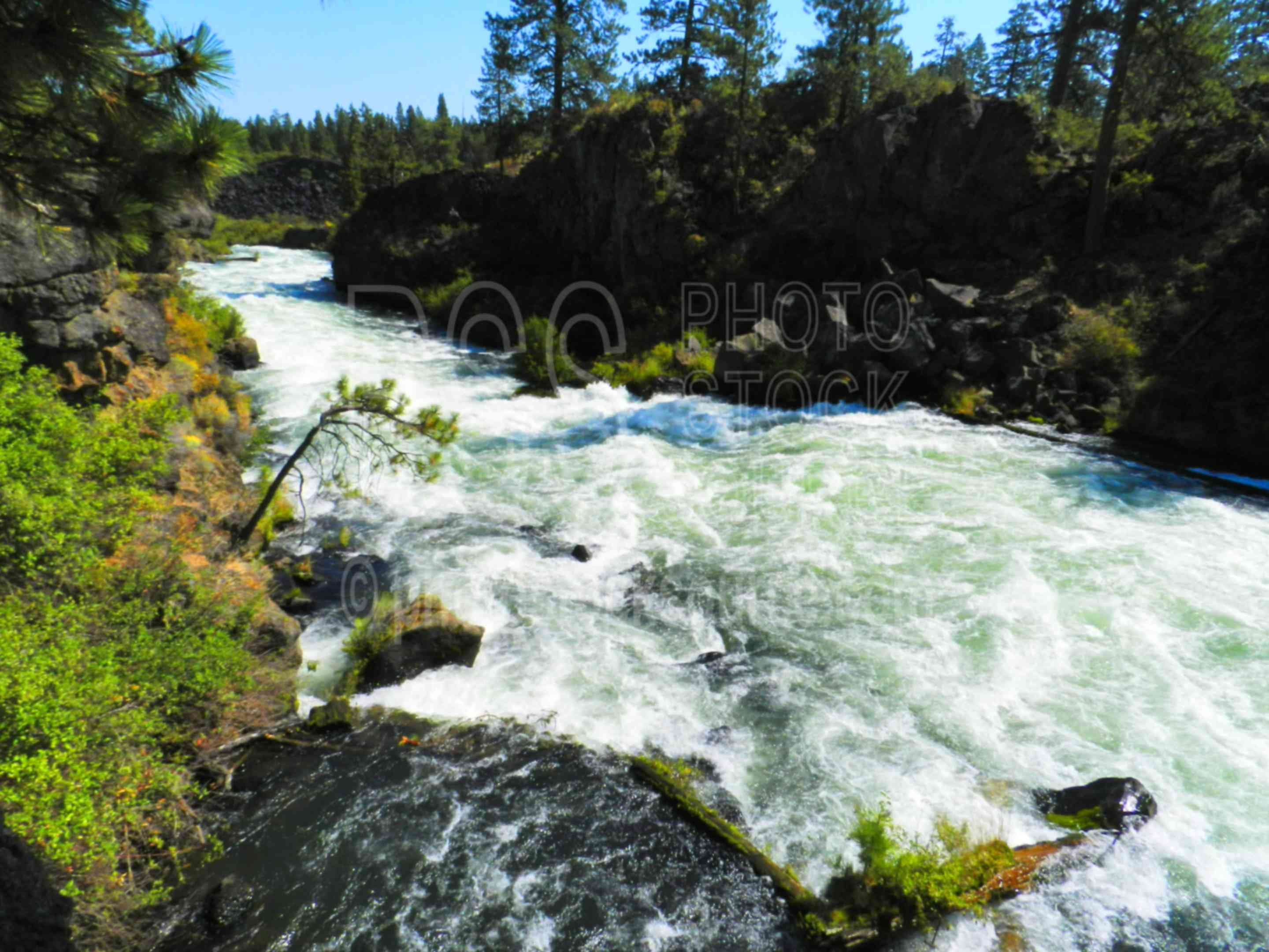 Dillon Falls,river,water,rapids,waterfall