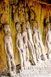 Wood carvings on display