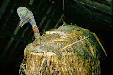 Photo of Woven Cassowary