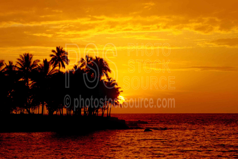 Sunset at Madang,ocean,palm,seas,sunset,trees,water