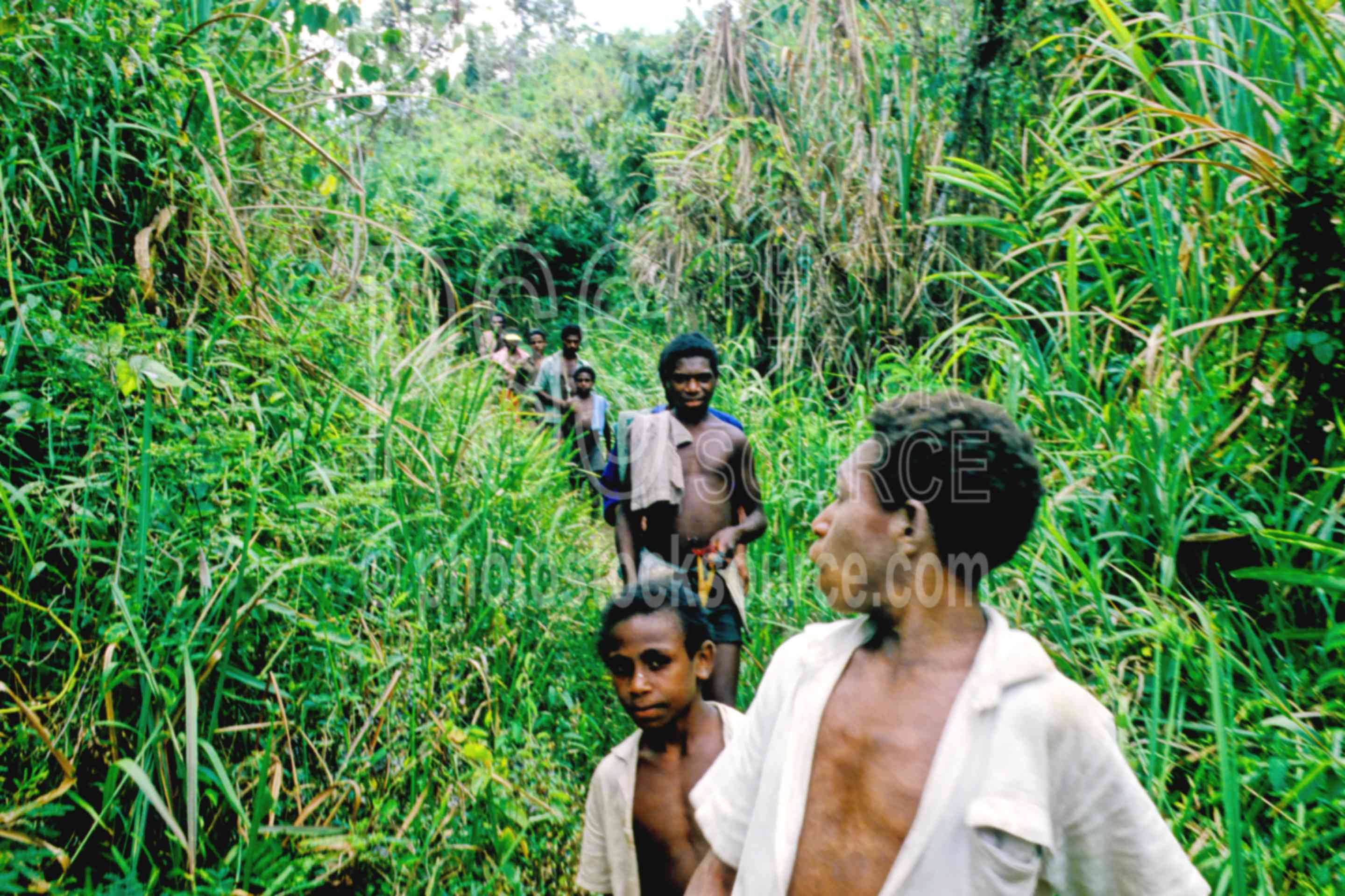 Boys on bush path,boys,bush,jungle,trail,walk,children