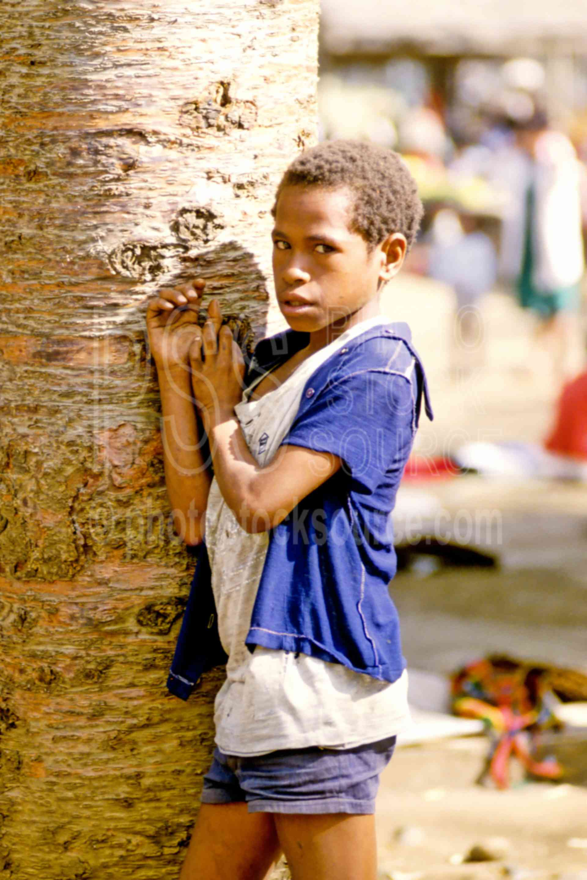 Boy at the Market,boys,tree,children