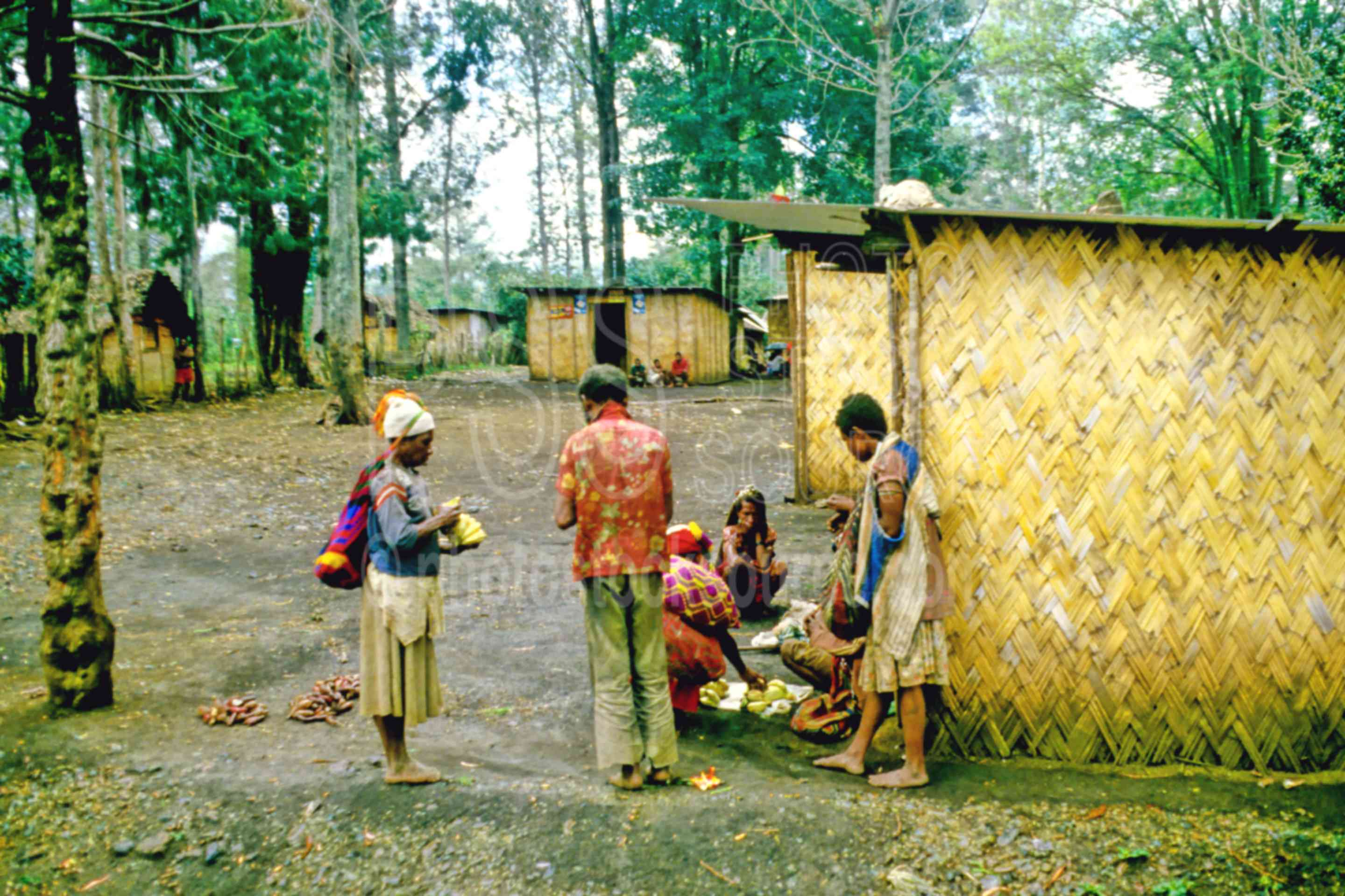People Visiting,village,family,house,hut,grass,primitive