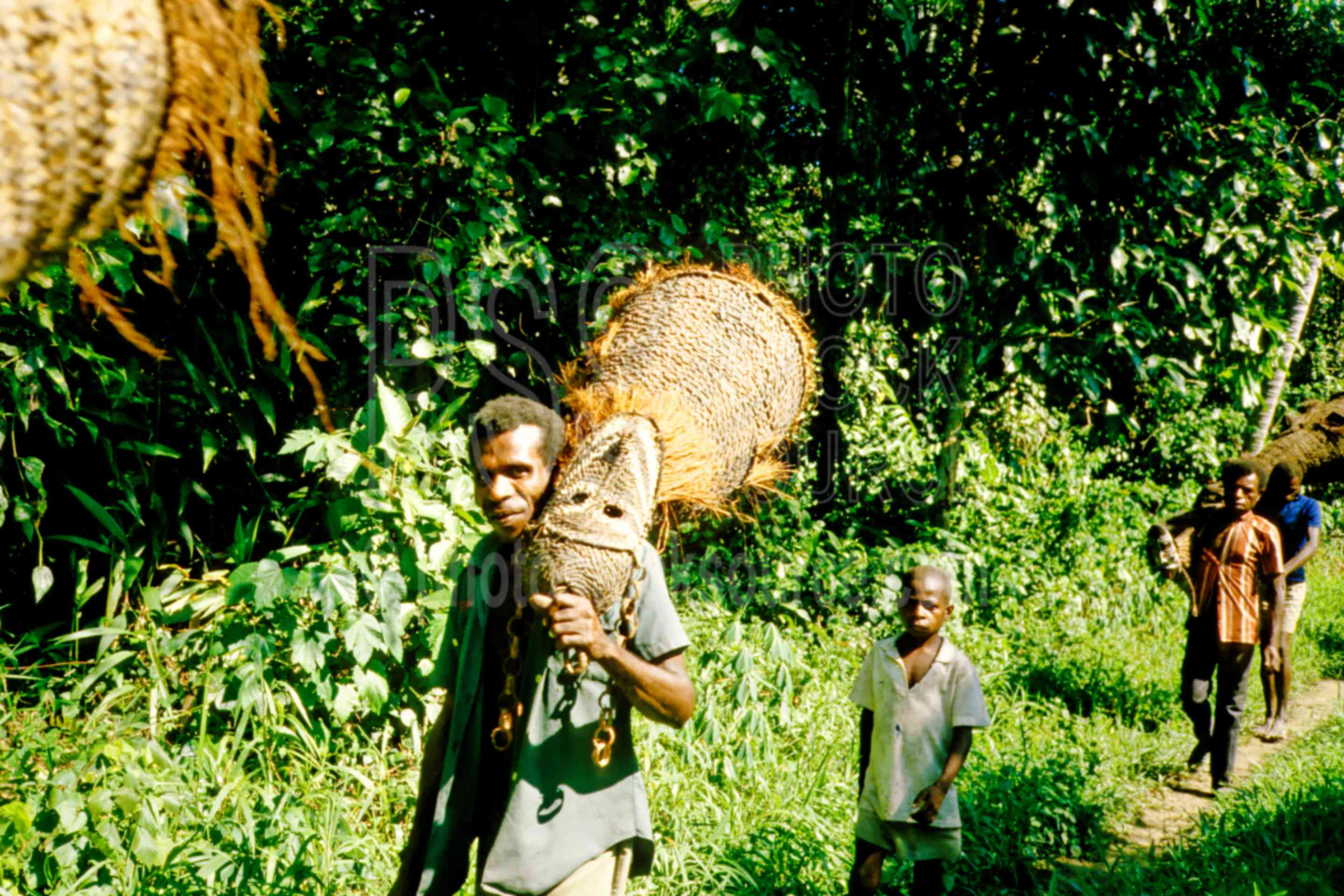 Men Carrying Tambuans,tambuan,mens,trail,carry,arts,artifact