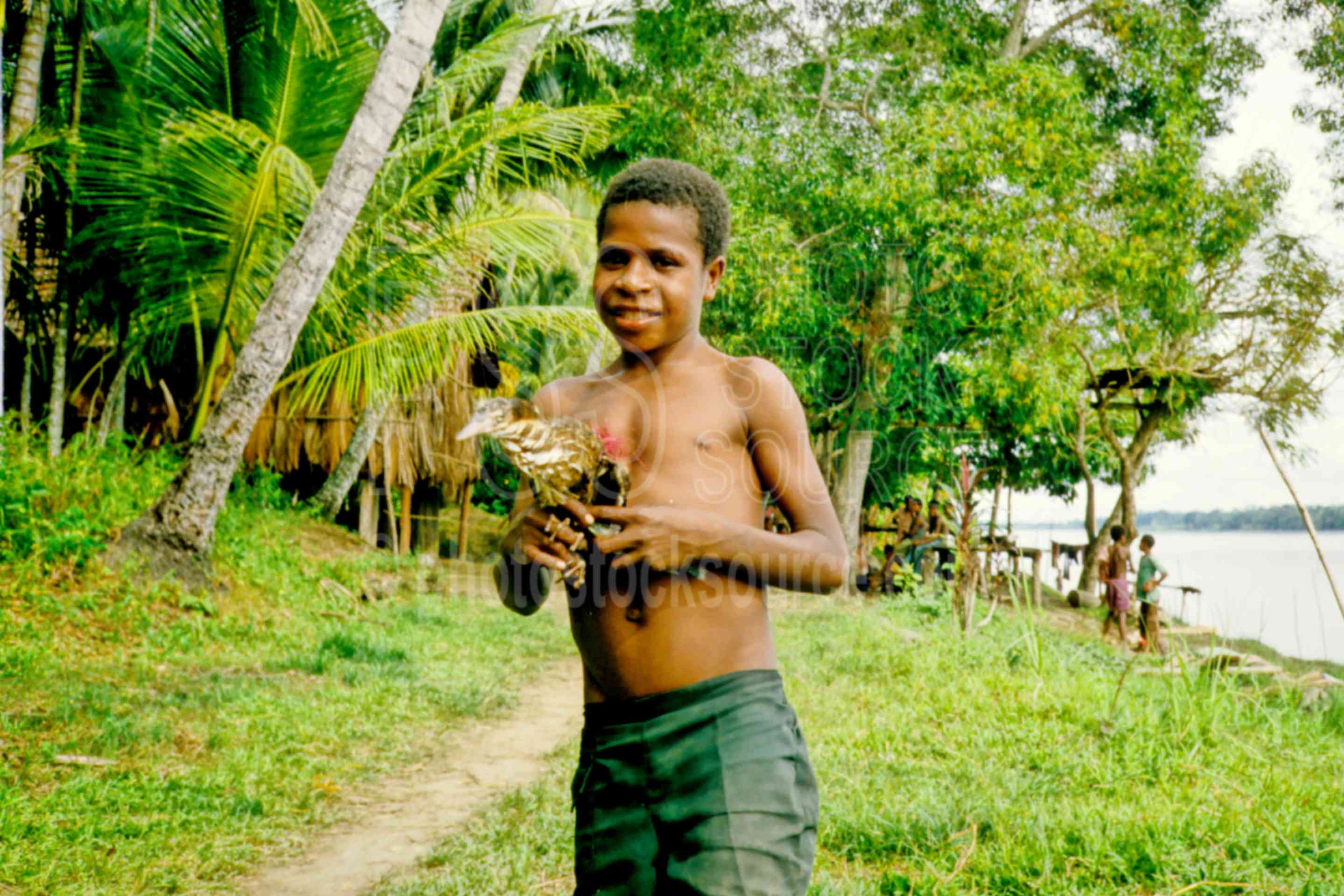 Boy with his Chicken,animal,boys,chicken,jungle,trail,children