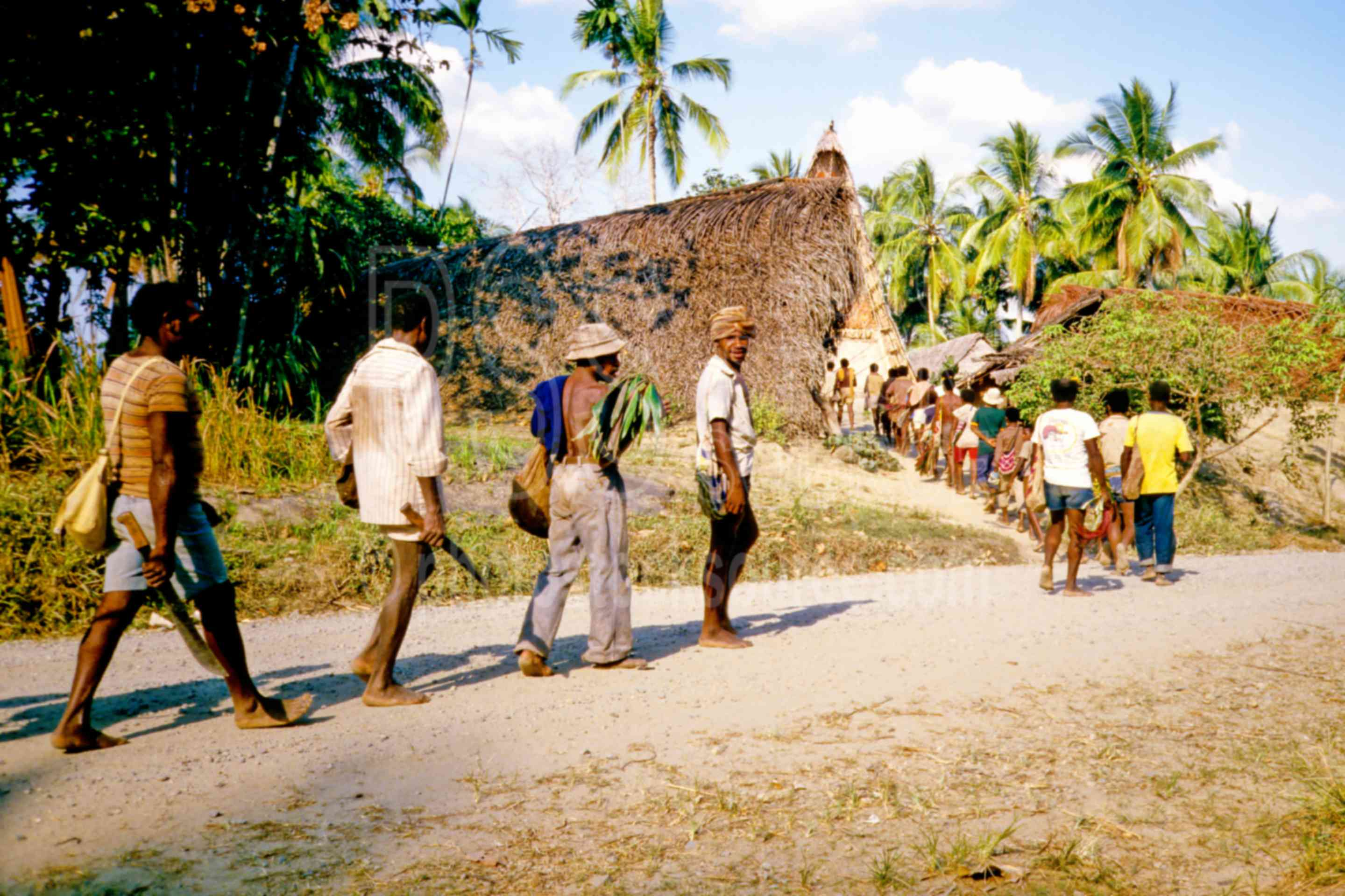 Men Going to Ceremony,ceremony,gathering,mens,yams,png ceremonies
