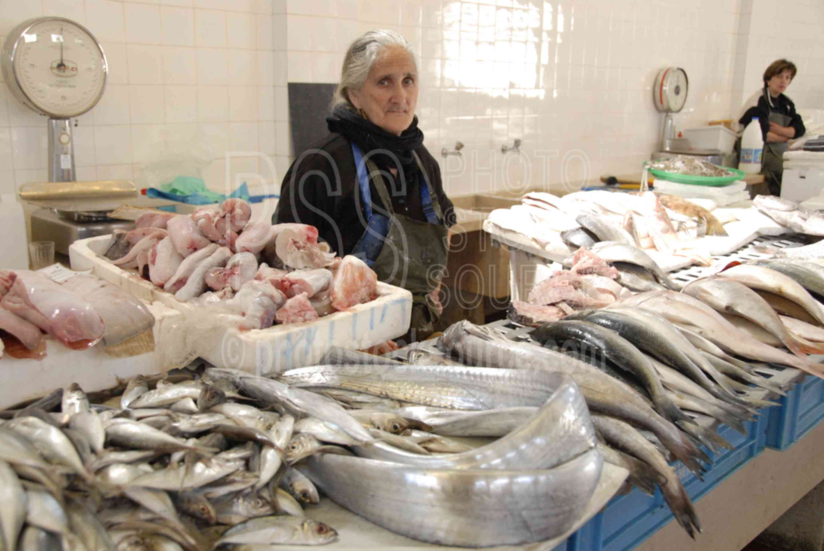 Fish Seller,food,seller,vendor,mercado do peixe,woman,market,fish,fishmonger