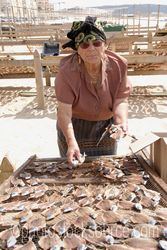 Photo of Woman Drying Fish