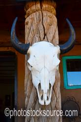 Post with Cow Skull