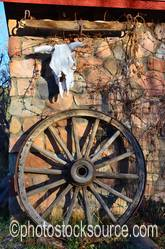 Cow Skull and Wagon Wheel