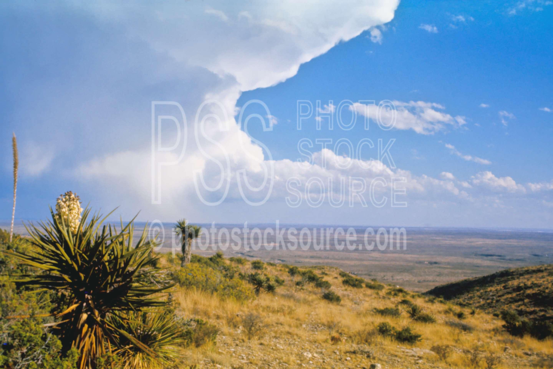 Desert Clouds,rain,rainstorm,storm,usas