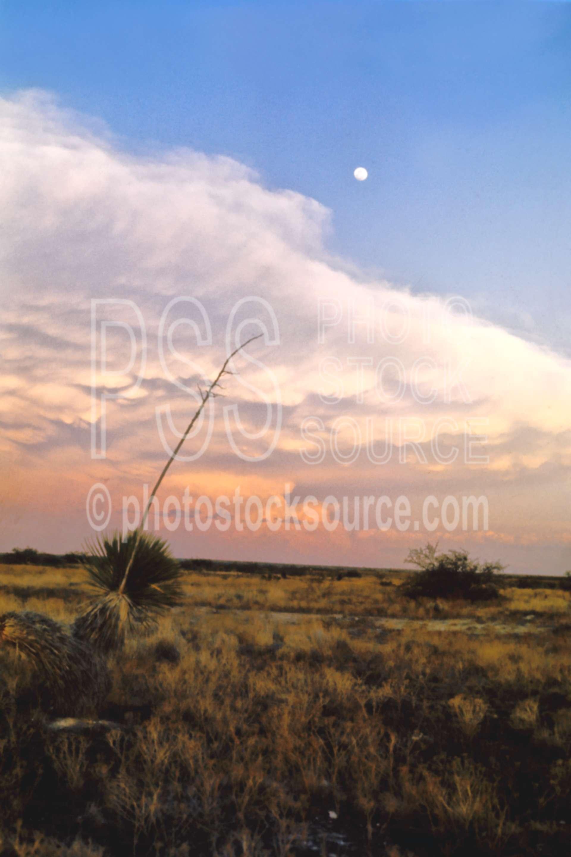 Clouds and Moon,cloud,moon,rain,rainstorm,storm,usas,landscapes
