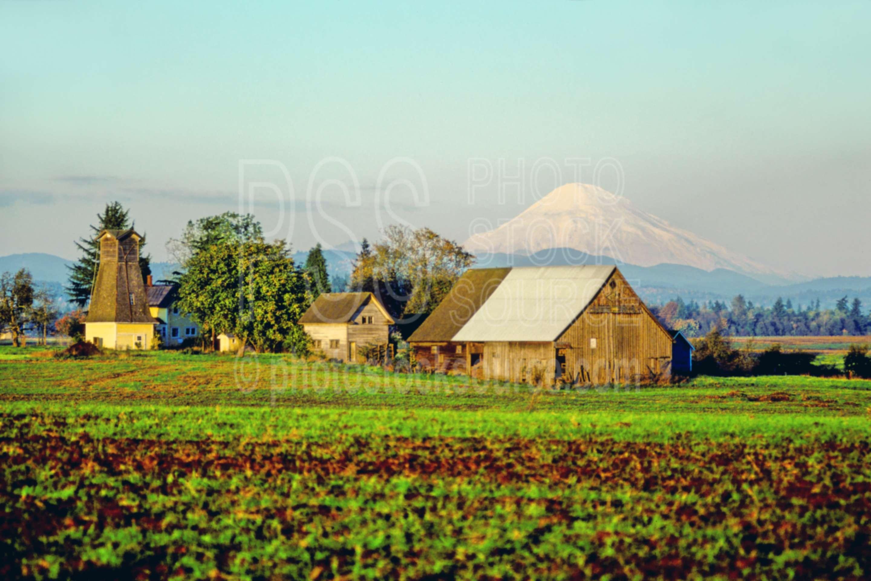 Mt. St. Helens,barn,mount,usas,barns,nature,mountains
